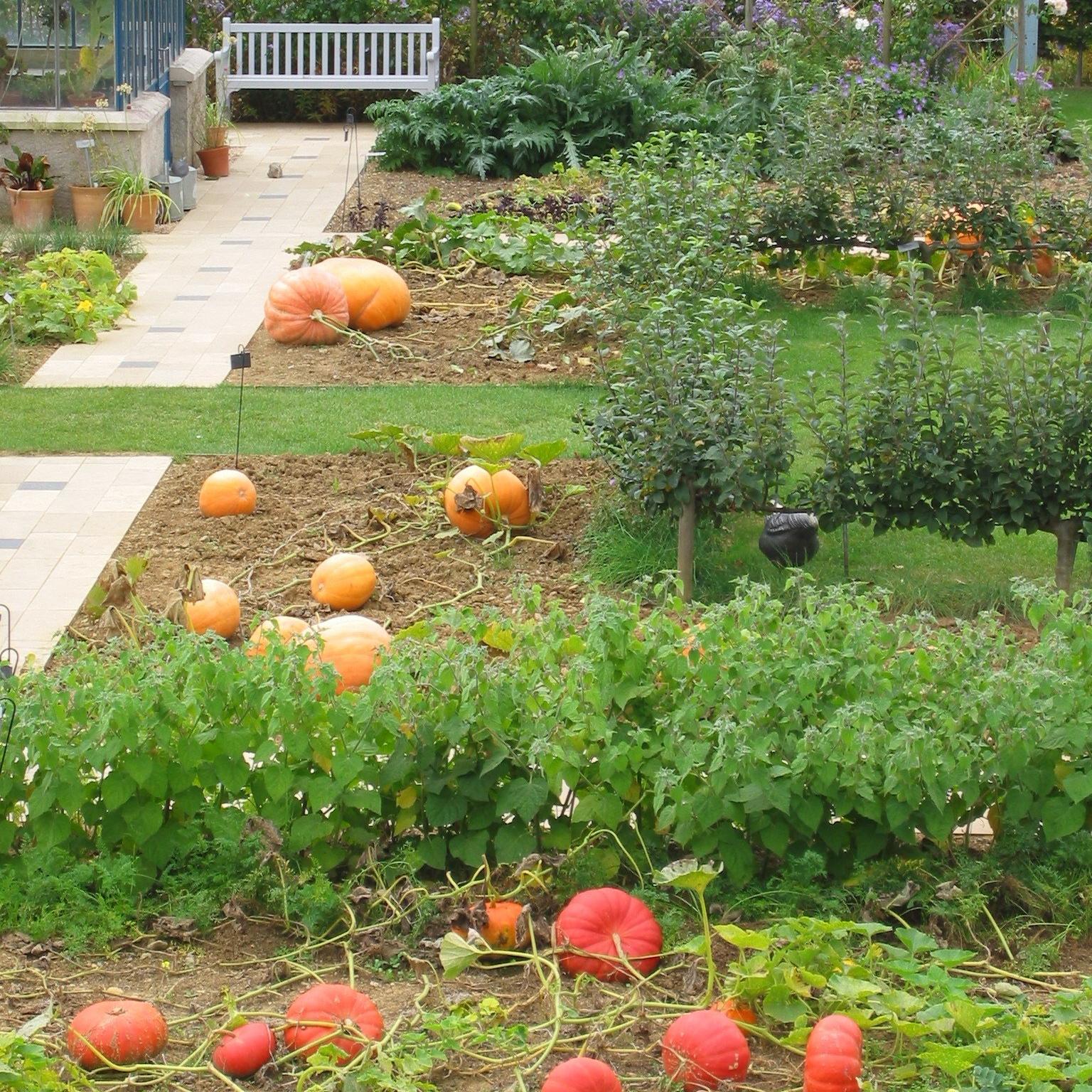 biogarten-224-2407_img-e1519053431460.jpg